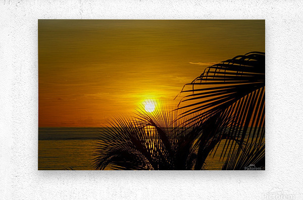 Sunrise at the palm tips  Metal print