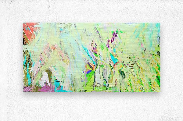 Image013  Metal print