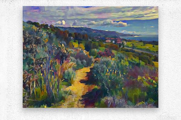 California spring hike  Metal print