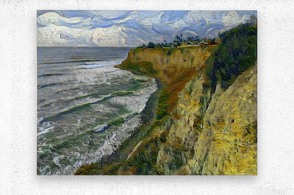 California cove  Metal print