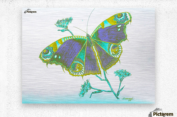 Butterfly Dressed for a Masquerade Ball III  Metal print