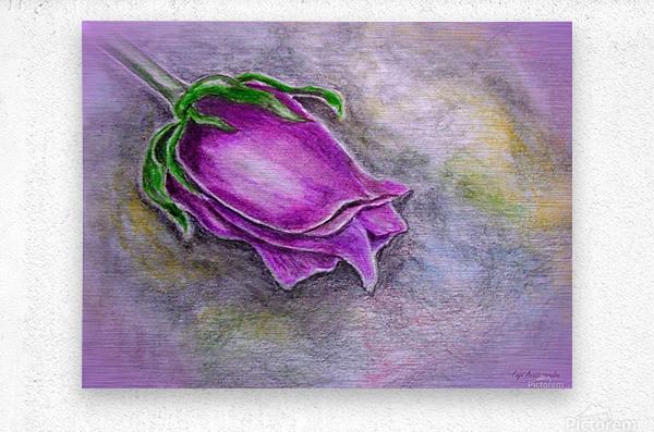 Dreamy Rose  Metal print