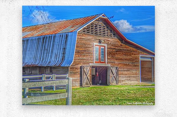 Barn Life.....  Metal print