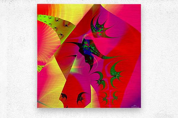 Sun_Flies  Metal print