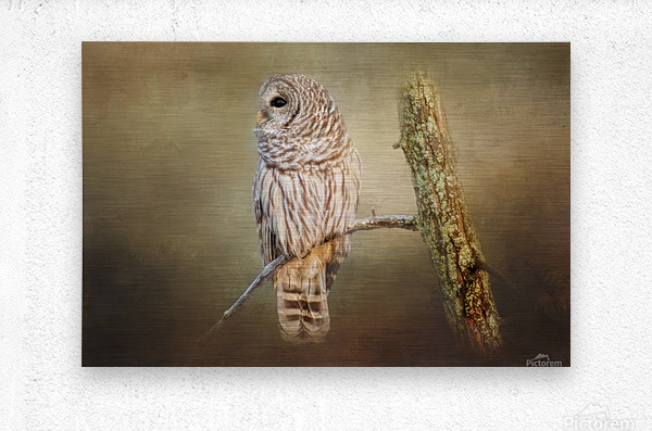 Whos There  Metal print