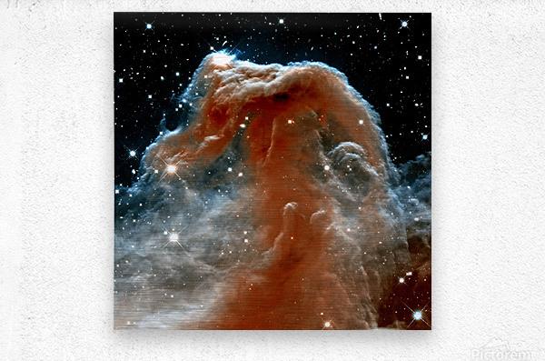 Horsehead Nebula In Space  Metal print
