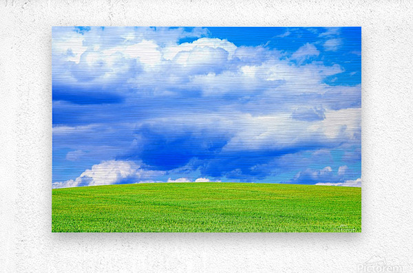 Blue Sky Clouds Field Bright Colorful Scenery Background   Metal print