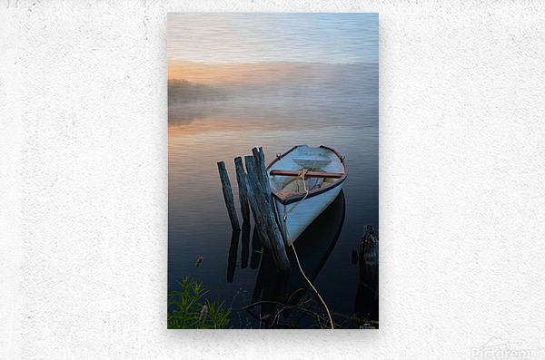 Morning Tranquility  Metal print