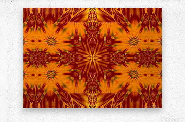 Gold Star of the Meadow  Metal print
