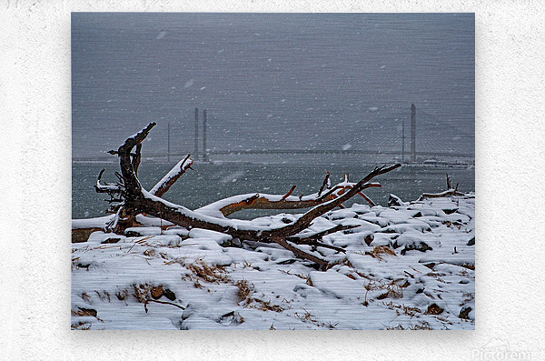 Indian River Bridge with Driftwood and Snow  Metal print