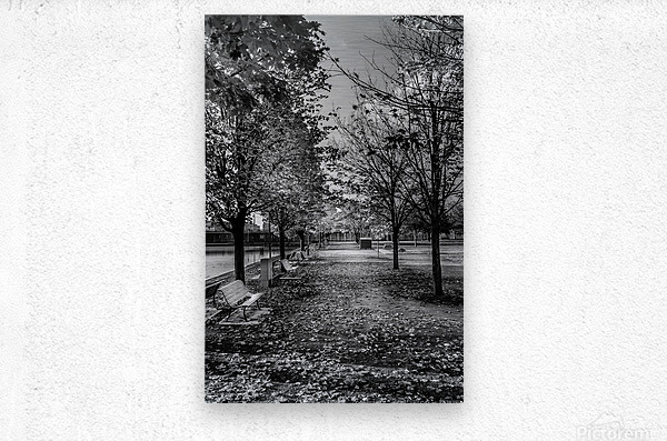 Old Port Of Montreal Autumn B&W  Metal print