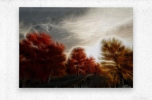 Impressionist Autumn Scene  Metal print