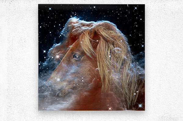 Horsehead Nebula with Horse Head in Space  Metal print