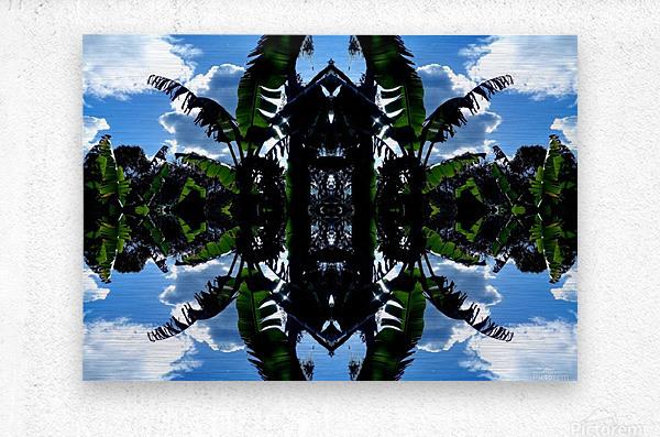 natural 3  Metal print
