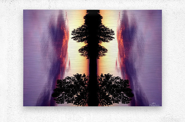 nube 47  Metal print