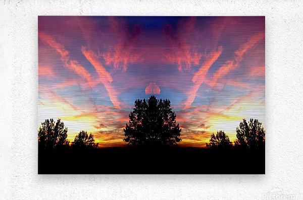 nube 58  Metal print