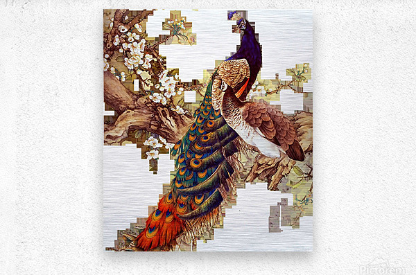 china peafowl glass feather peacock  Metal print