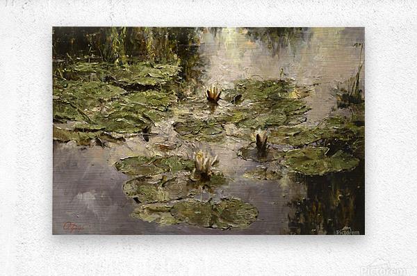 Old_pond  Metal print