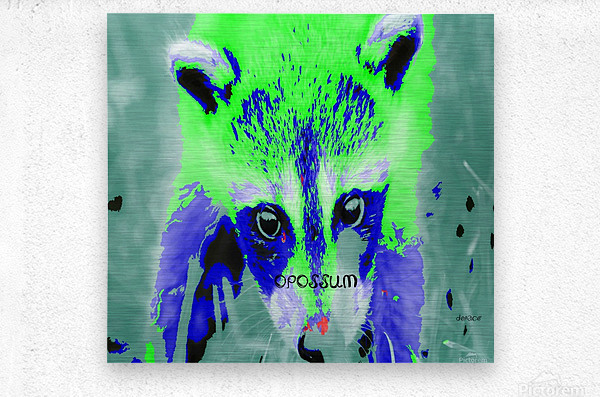 abstract Opossum  Metal print