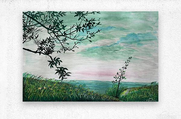 Landscape_DKS3  Metal print