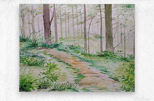 Landscape_DKS_2  Metal print