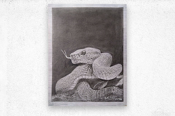 Snake_DKS  Impression metal