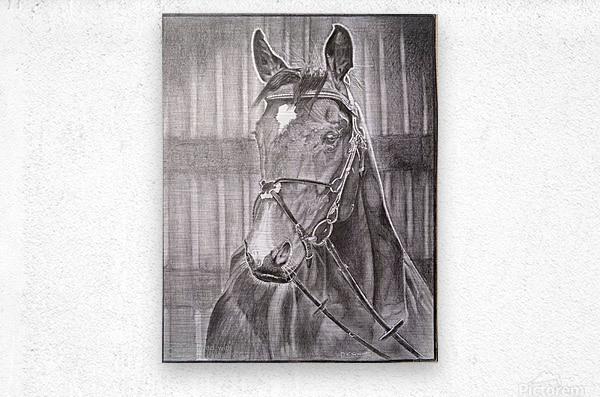 Horse_DKS  Impression metal