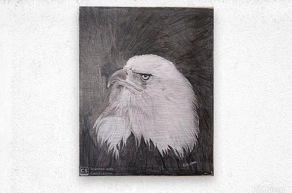 Eagle_DKS  Impression metal