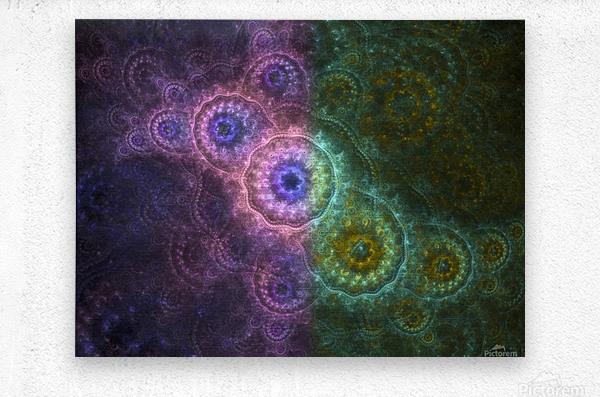 Path of Harmony  Metal print