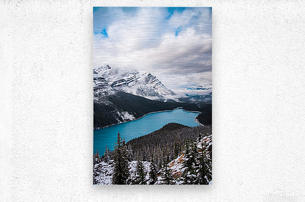 Wintry Peyto Lake  Metal print