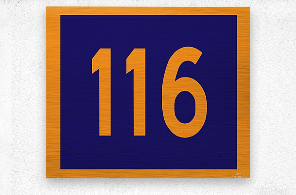 Number 116  Metal print