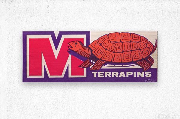 1957 Maryland Terrapin Art Reproduction  Metal print