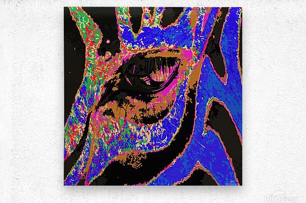 Zebra Eye  Metal print