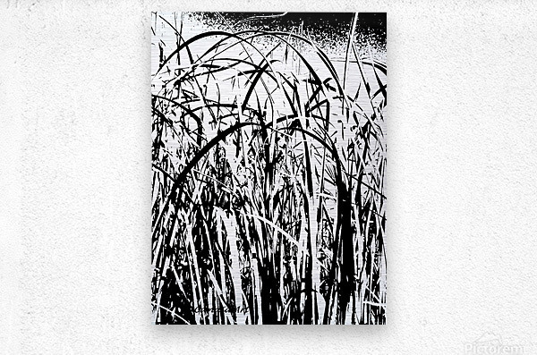 Black & White Nature Texture  Metal print