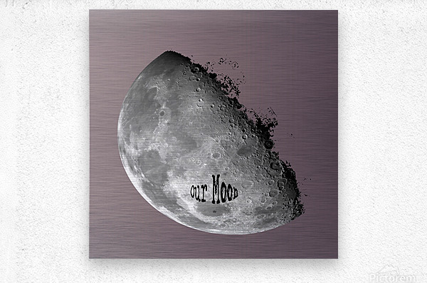 Our Moon  Metal print