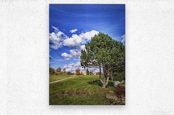 Tree and blue sky with clouds  Metal print