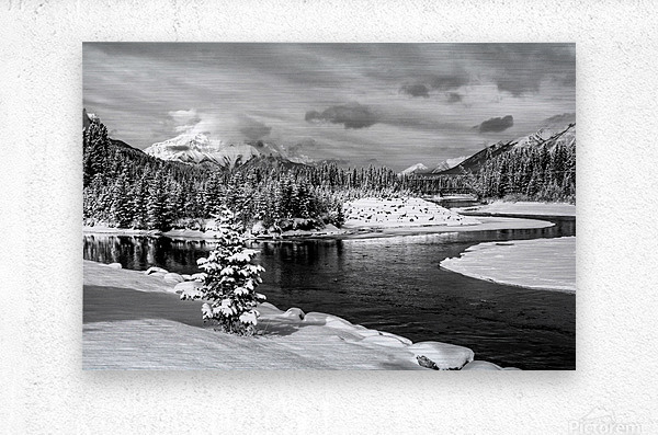 Snowy Bow River Canmore Alberta  Metal print
