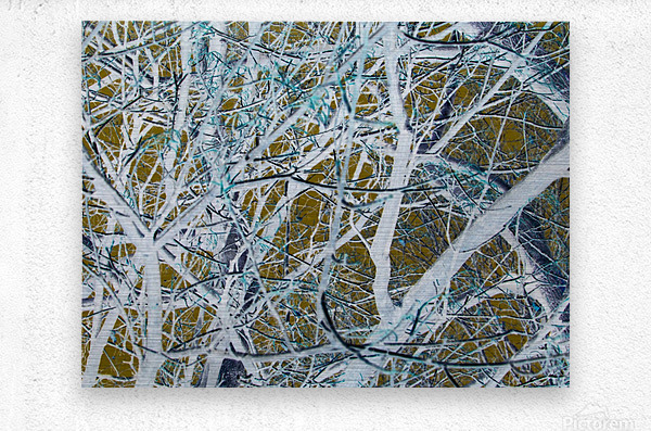 Funky Branches  Metal print