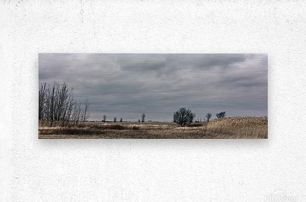 Cloudy sunday  Metal print