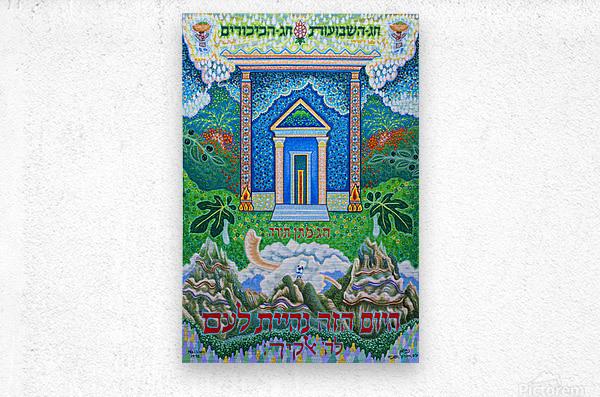 1998 011  Metal print