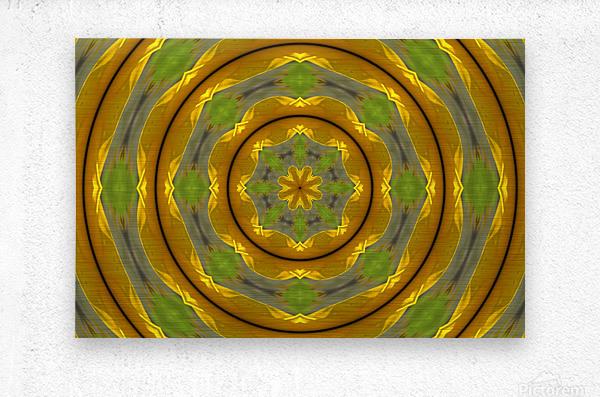 Sunflower G K1  Metal print