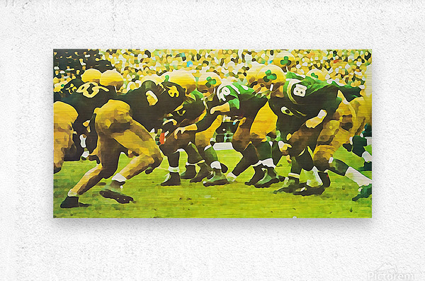 best notre dame football art  Metal print