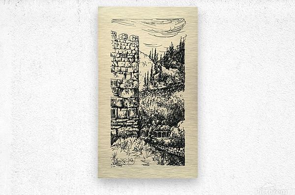 BNC1967 05  Metal print