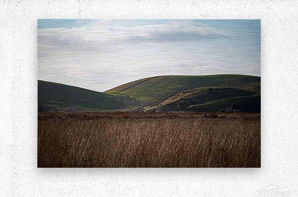 Coyote Hills During Sunset  Metal print