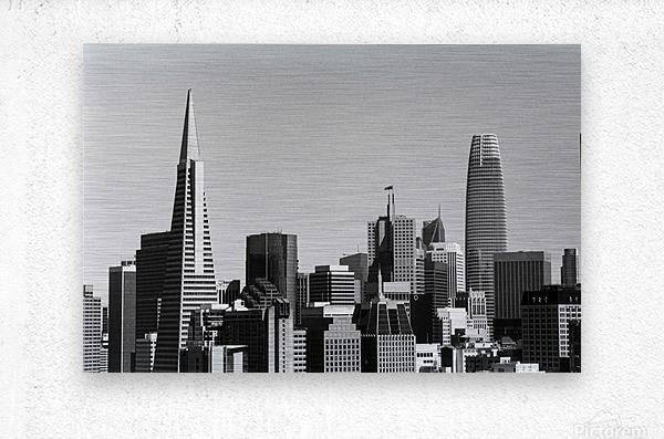 Black and White San Francisco Skyline  Metal print