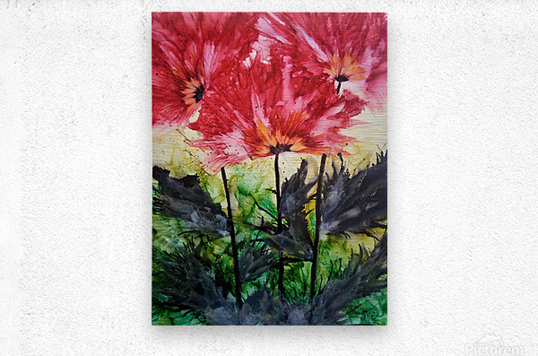 Poppies Galore  Metal print