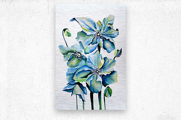 Blue Poppies Watercolor  Metal print