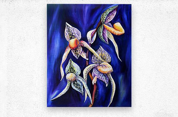 Lady Slipper Watercolor Painting  Metal print