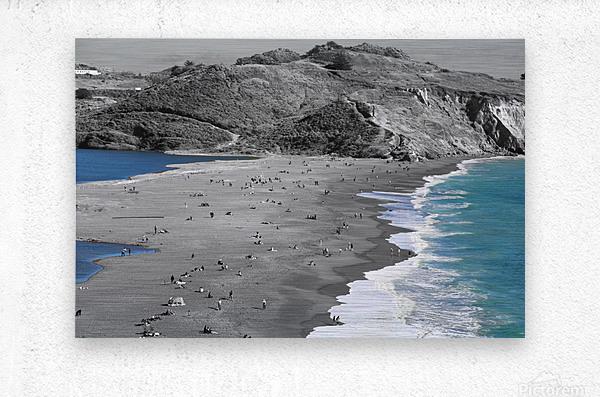 2 Bodies 1 Beach  Metal print
