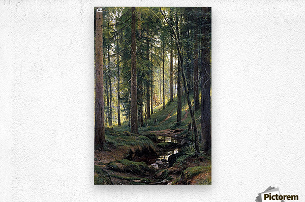 Stream by a forest slope  Metal print